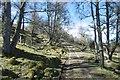NO0954 : Road to Loch Charles by Richard Webb