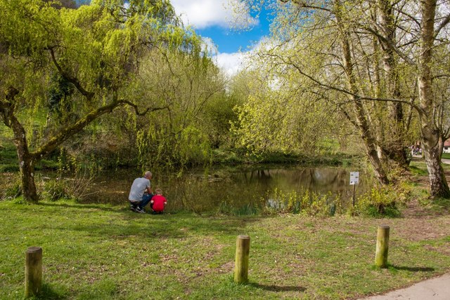 Yeovil Country Park: Time to learn