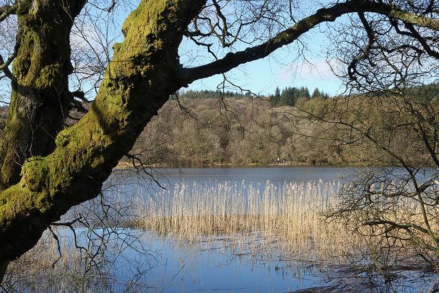 Woodhall Loch