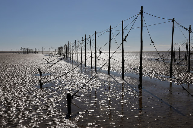 Fishing nets on Mersehead Sands