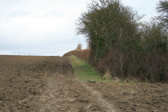 Claypits path on Twitham Hill