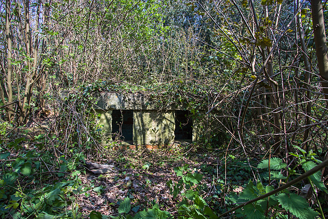 WWII Hampshire: environs of Havant & Emsworth - Emsworth Common pillbox (5)