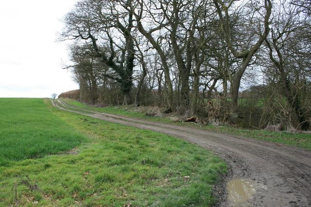 Twitham Hill