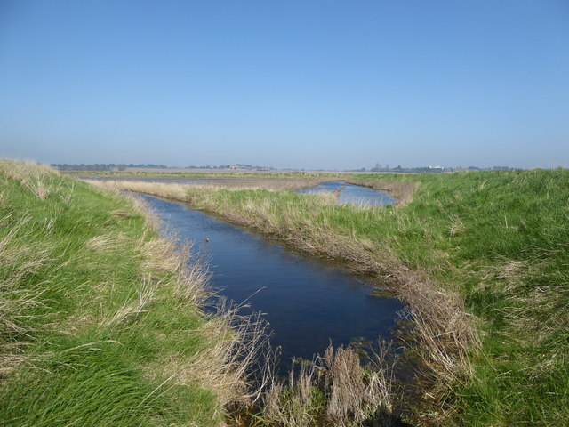 Tinker's Marshes
