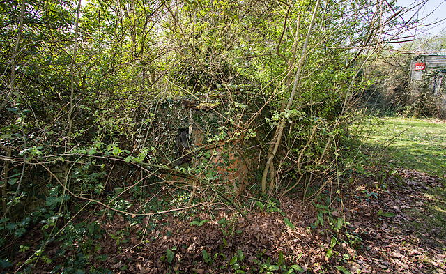 WWII Hampshire: environs of Havant & Emsworth - Comley Hill area pillbox no. 1 (7)