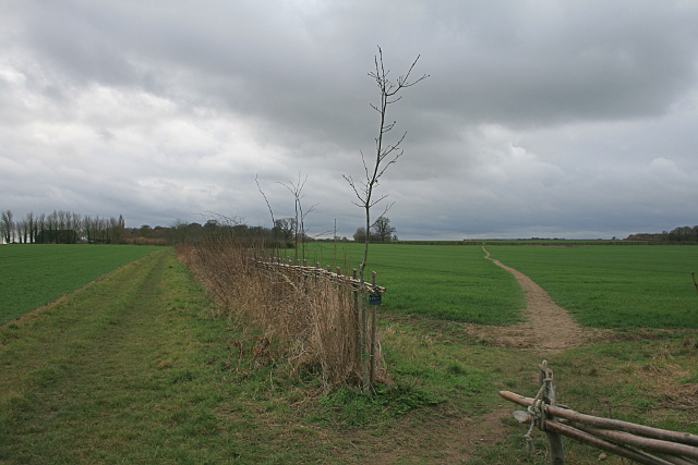 Footpath EE190 to Claypits