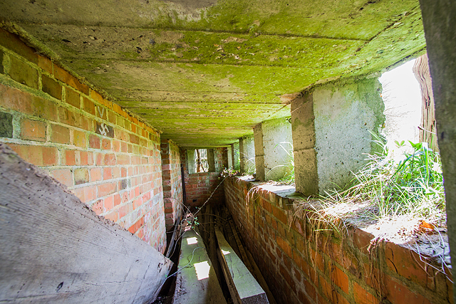 WWII Hampshire: environs of Havant & Emsworth - Comley Hill area pillbox no. 2 (11)