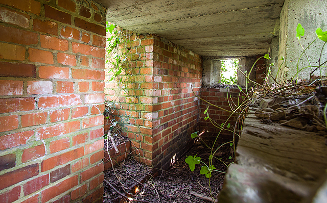 WWII Hampshire: environs of Havant & Emsworth - Comley Hill area pillbox no. 3 (13)