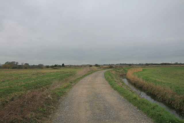 Finglesham Drove towards Ring Wall sluices