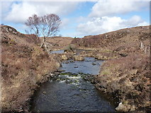 NG8878 : The Inveran River by Richard Law