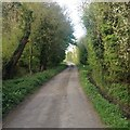 SP6427 : Road in Godington by Dave Thompson