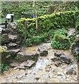 SK1670 : Stepping Stones by Chris Thomas-Atkin