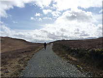 NG8977 : On the track towards Ardlair by Richard Law