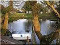TQ8011 : Lake at Gorrick Lodge, Silverhill Avenue by Patrick Roper