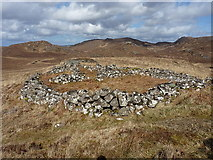 NG8976 : Large sheepfold above Loch Maree by Richard Law
