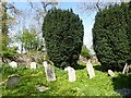 SX9984 : Gravestones in Gulliford burial ground by David Smith
