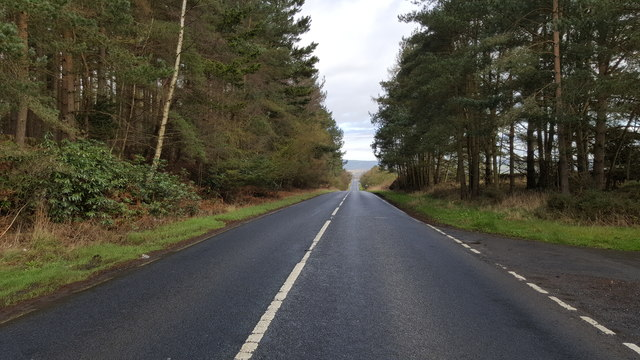 Looking north on the A68 at Broomley Fell