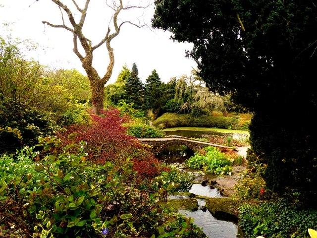 Spring in Ness Gardens www.nessgardens.org.uk