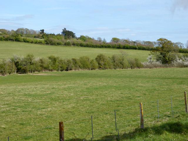 Fields north of railway