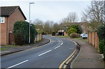 TL3759 : Egremont Rd by N Chadwick