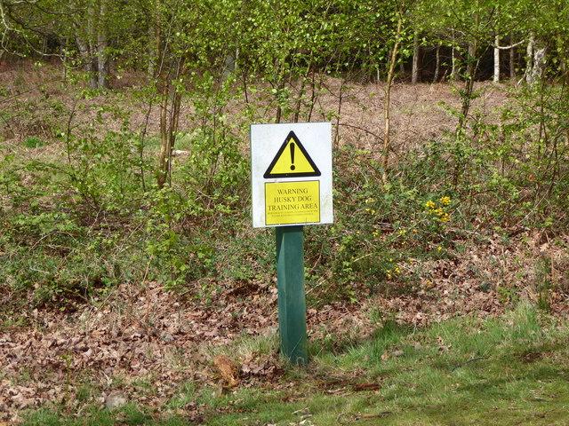 Beware huskies!