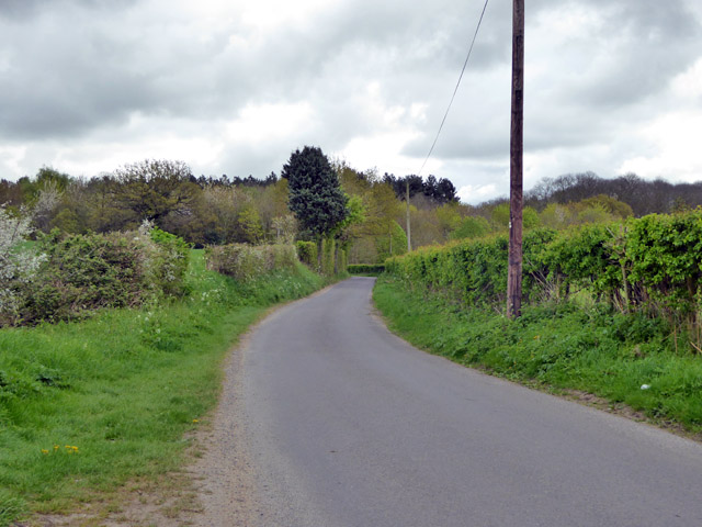 Lane east from Blackmore End