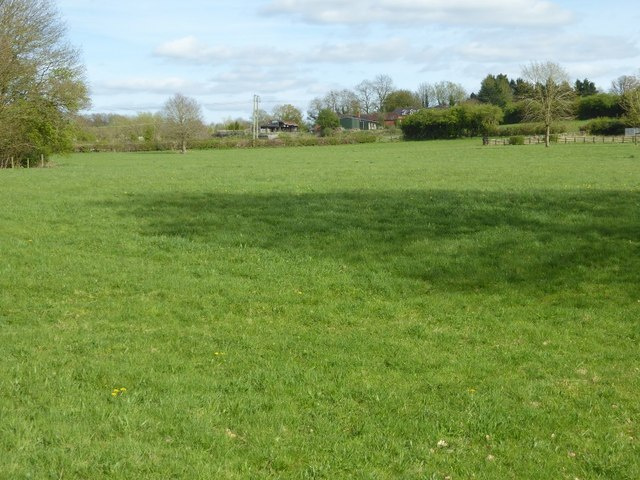 Field at Springhill Farm