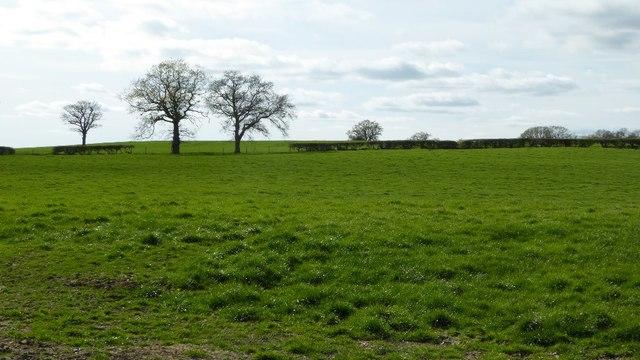 Farmland south of Cur Lane