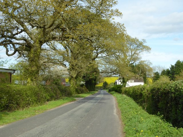 Cur Lane