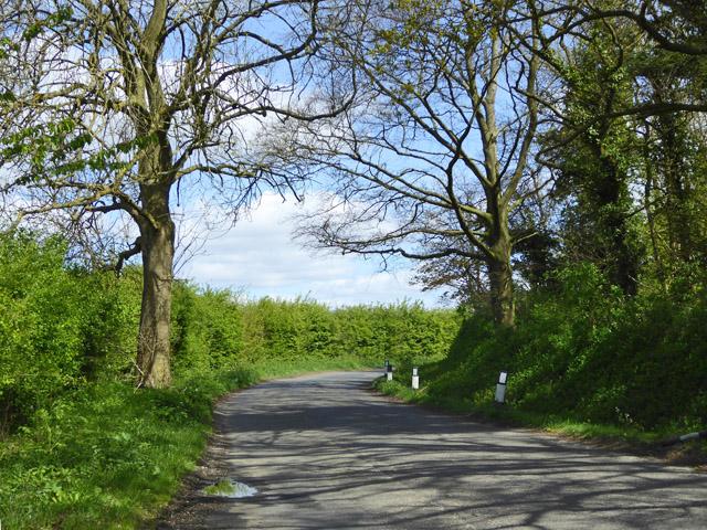 Bend on lane towards Brettenham