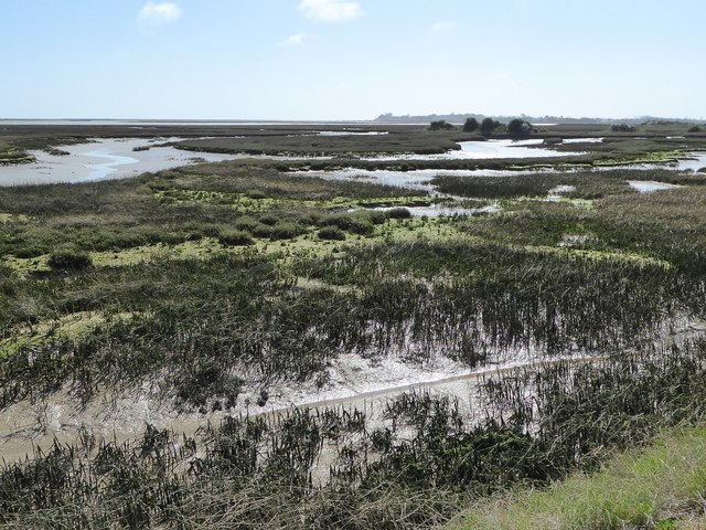 Pagham Harbour from Pagham Wall