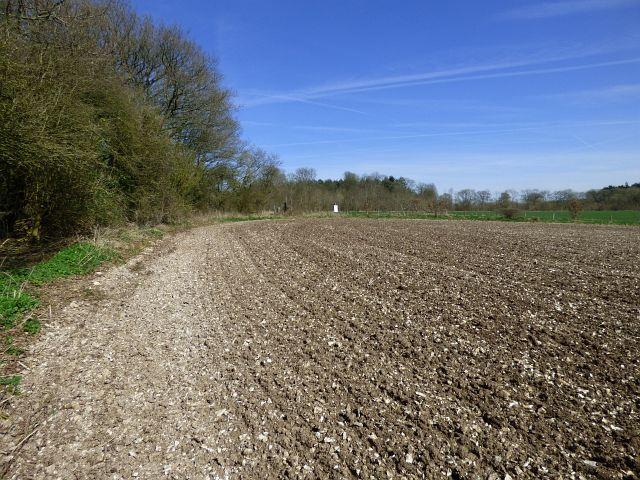 Farmland, Everleigh