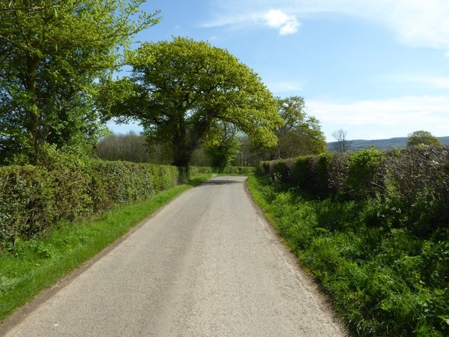 Country road near Munsley Green