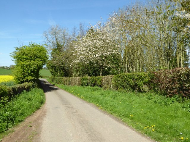 Wood beside Pencombe Cross