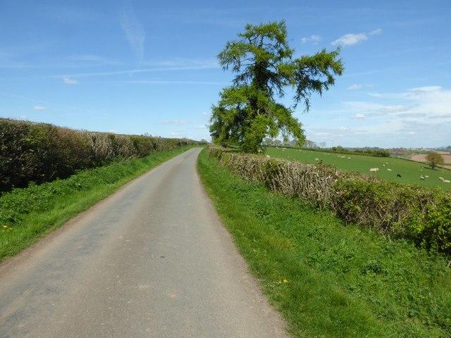Road to Hegdon Hill