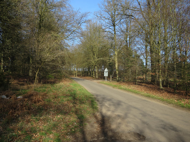 Road from Santon Downham