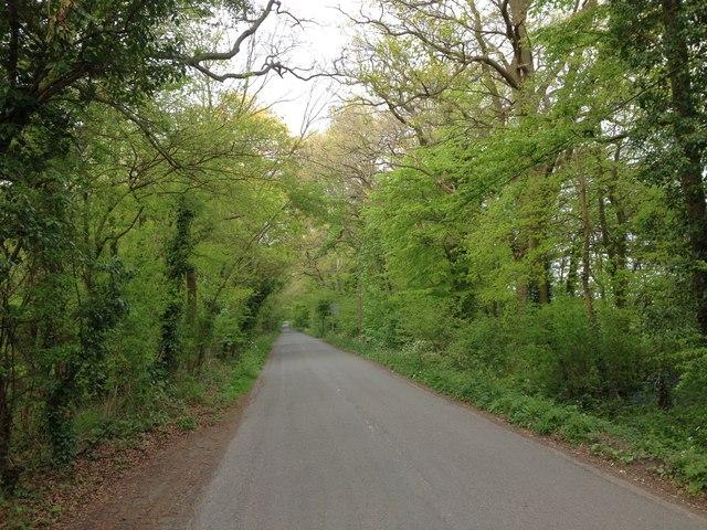 Bore Place Road, Chiddingstone