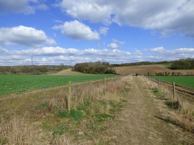 Farmland, Chalfont St Peter