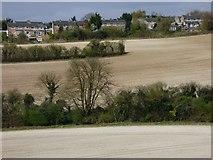 SU8992 : Farmland, High Wycombe by Andrew Smith