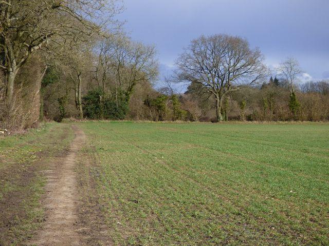 Farmland, Hazlemere