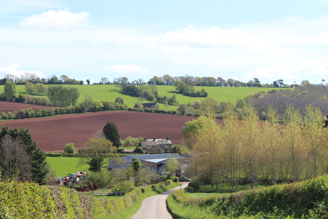 The lane to Burton in springtime