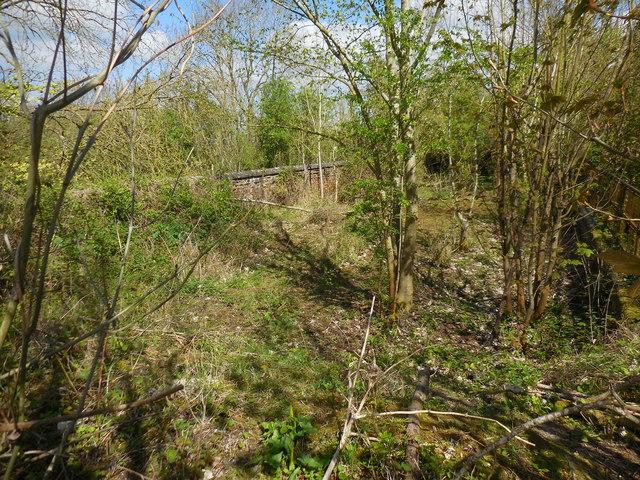 Shennington-Abandoned Road Bridge