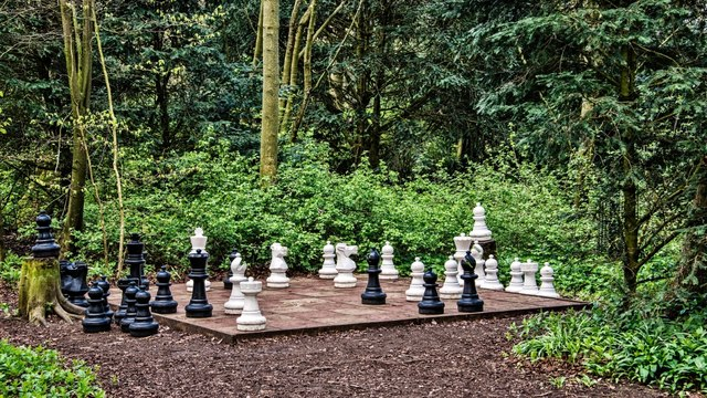 Rievaulx Terrace: Woodland Chess