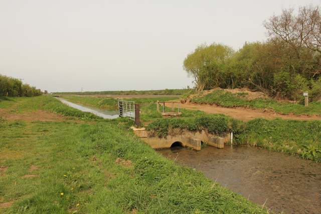 Main Drain sluice