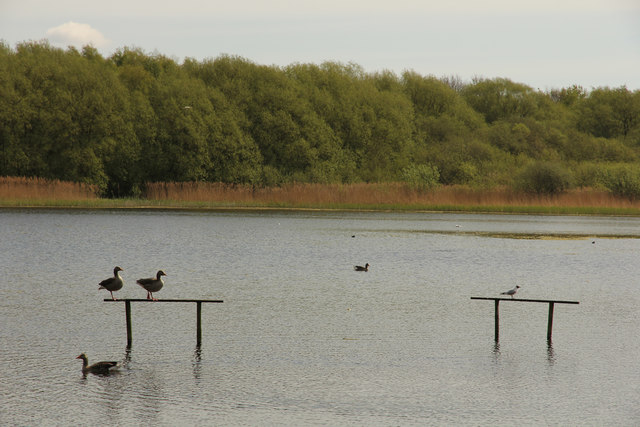 Boultham Mere Nature Reserve