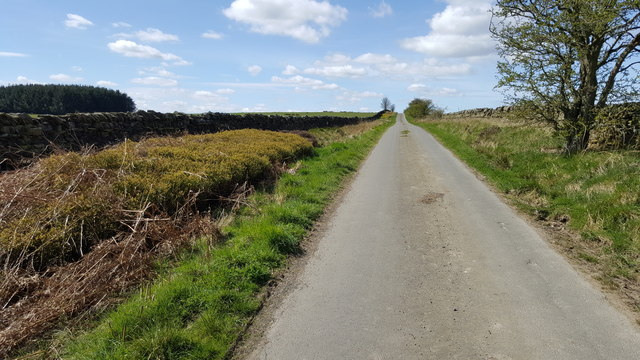 Road from Jingling Gate to Greenrigg moor