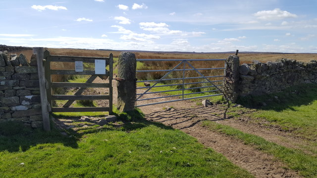Gates on Byway leading to Greenrigg Moor