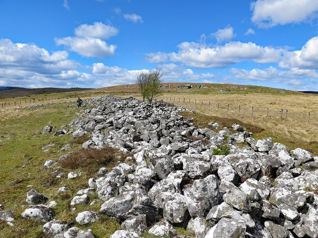 Bellshiel Long Cairn