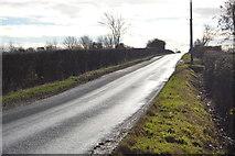 TL3858 : Long Rd by N Chadwick