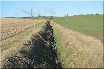 TL3958 : Field ditch by N Chadwick